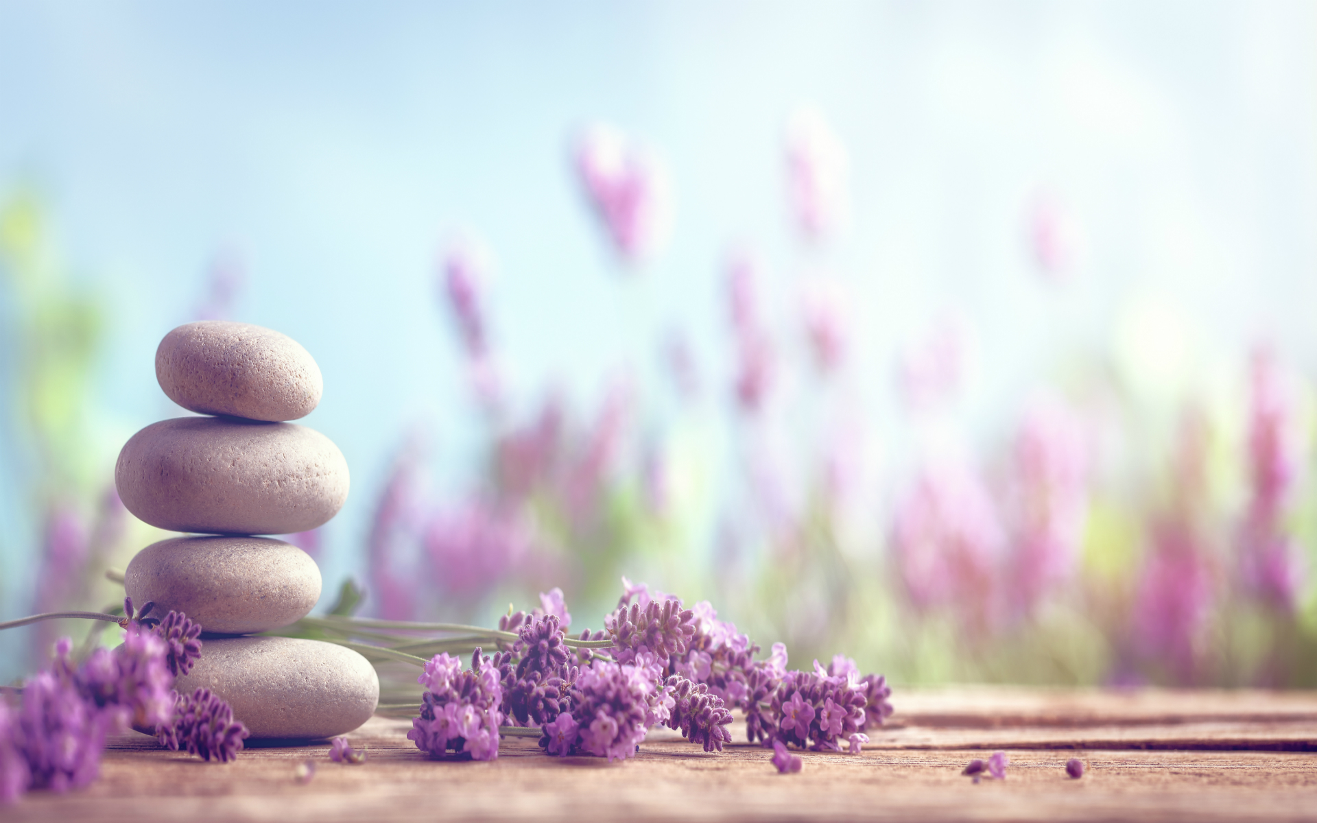 Point of focus on stacked spa rocks surrounded by fresh lavender stems